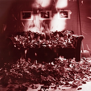 And the leaves only fall once:variations, foto(2011)Nina Wedberg Thulin kopia 2